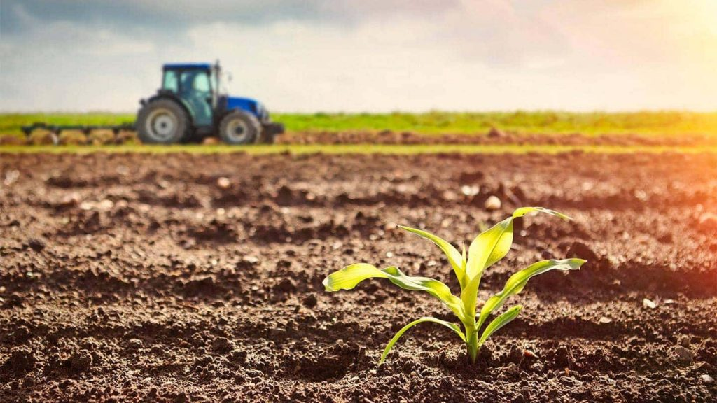 growing of agriculture sector through modern farming in B2B exports