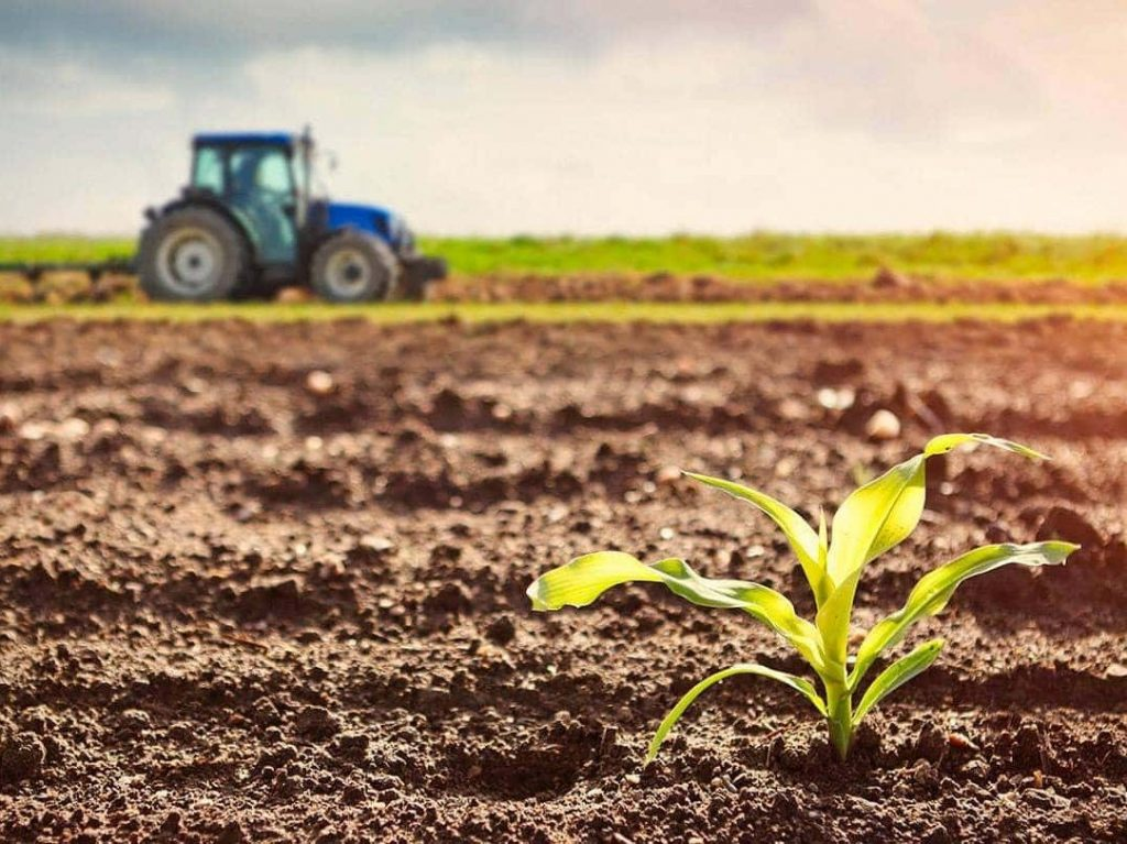 Indian agriculture sector boom during the pandemic