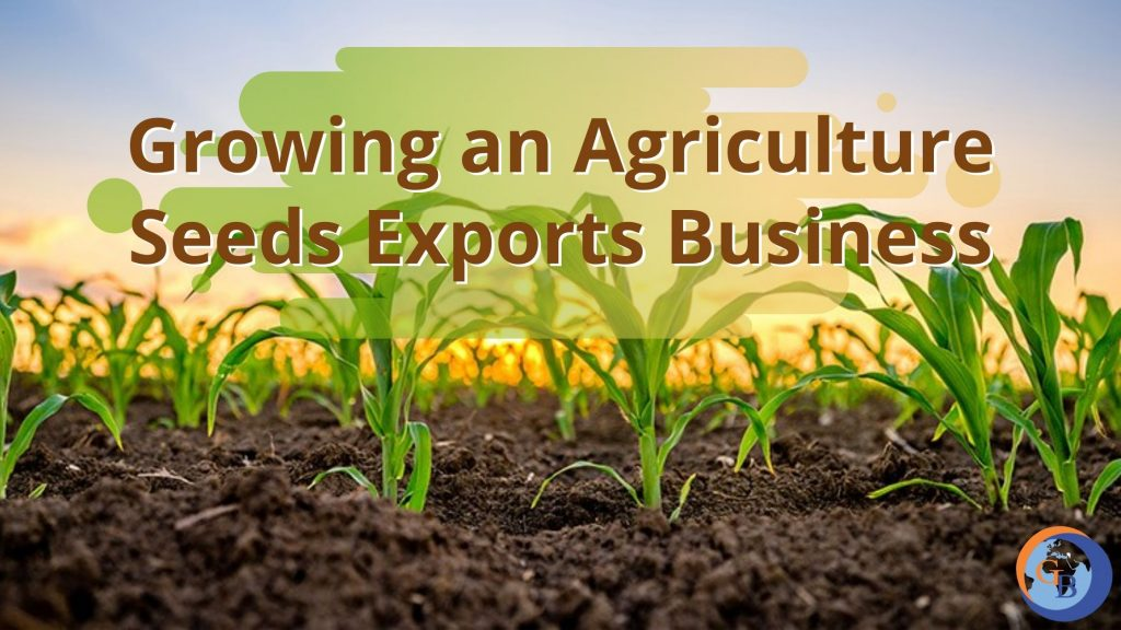 growing an agriculture seeds exports business